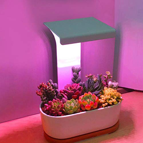 LED Plant Lamp, Indoor Usb Led Grow Light Timer Fytolamp Voor Planten Succulent Volledig Spectrum Lichten Voor Bloemen Cactus Ir Vu Light Bureaulamp