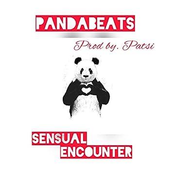 Sensual Encounter (Instrumental Version)