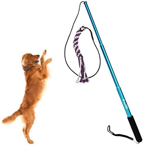 UEETEK Interaktive Hundespielzeug Angel Kauspielzeug Spielangel Stock mit Seil Hundeangel Pole Haustier Teaser Größe S (Blau)