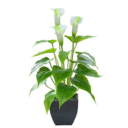 Artificial Flower Calla Lily Faux Small Potted Plant with Black Pot Fake Bonsai Flower for Home, Office, Indoor and Outdoor Occasions Decor (White Fake Flower)