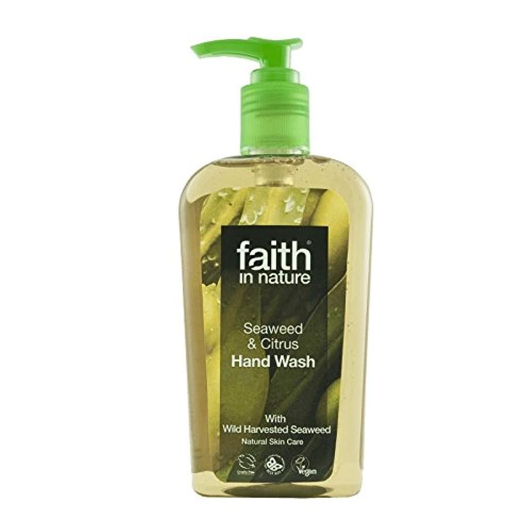 疑い者ドループ発症自然海藻手洗いの300ミリリットルの信仰 - Faith In Nature Seaweed Handwash 300ml (Faith in Nature) [並行輸入品]