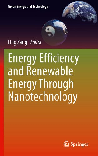 Energy Efficiency and Renewable Energy Through Nanotechnology (Green Energy and Technology)
