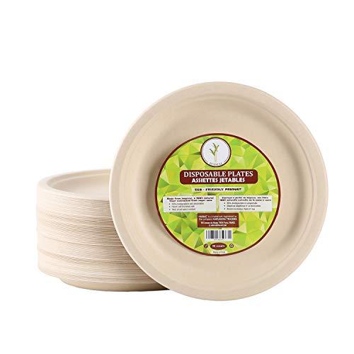 50 Assiettes Jetables Biodégradables Résistantes en Bagasse de 26 cm - Assiettes Ecologiques - Alternative au Plastique, Idéal pour les Fêtes, Barbecue, Pique-Niques - Vaisselle Jetable