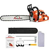 AUTOJARE Gas Chainsaw YJ5202, 20' Bar, 2 Cycle, 52cc, 2 Stroke, Cordless Chainsaw Cutting Wood