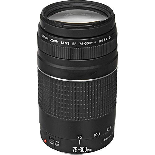 Canon EF 75-300mm f/4-5.6 III Telephoto Zoom Lens for Canon SLR Cameras (Renewed)