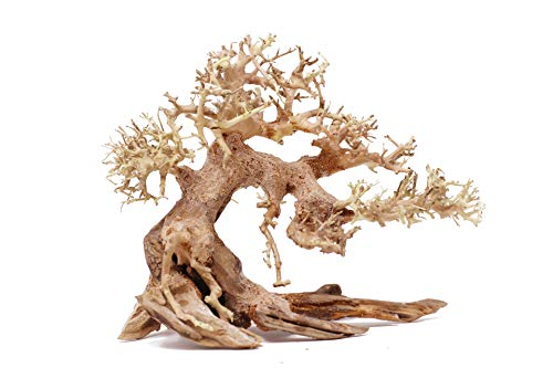 Bonsai Driftwood Aquarium Tree AS Random Pick (6in H x 8in L) Natural, Handcrafted Fish Tank Decoration | Helps Balance Water pH Levels, Stabilizes Environments | Easy to Install
