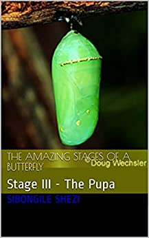 The Amazing Stages of A Butterfly: Stage III - The Pupa by [Sibongile Shezi]