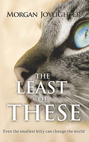 The Least of These: Even the smallest kitty can change the world (English Edition)