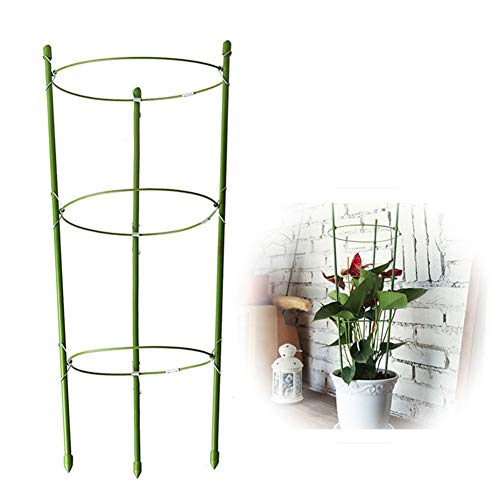 SADASD Plant Support Stakes,Durable Climbing Plant Support Cage,For Garden Trellis Tomato Flowers Stand Garden Green