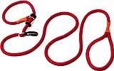 Hundefreund Guinzaglio Retriever | Guinzaglio e Collare in Un Unico Prodotto | 200 cm di g...