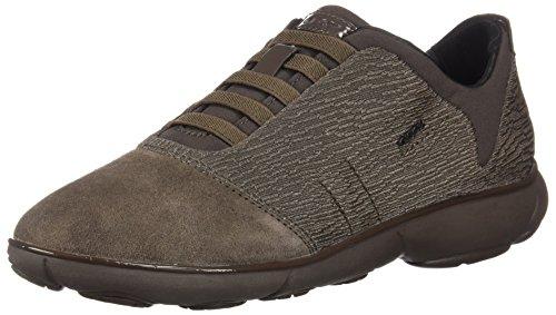 Geox Damen D Nebula C Sneaker, Braun (Chestnut C6004), 38 EU
