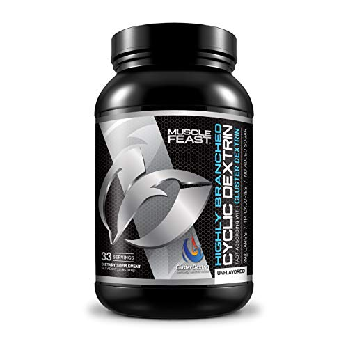 MUSCLE FEAST Highly Branched Cyclic Dextrin | Premium PreWorkout or PostWorkout | Easy to Mix GlutenFree Safe and Pure 1000g Unflavored