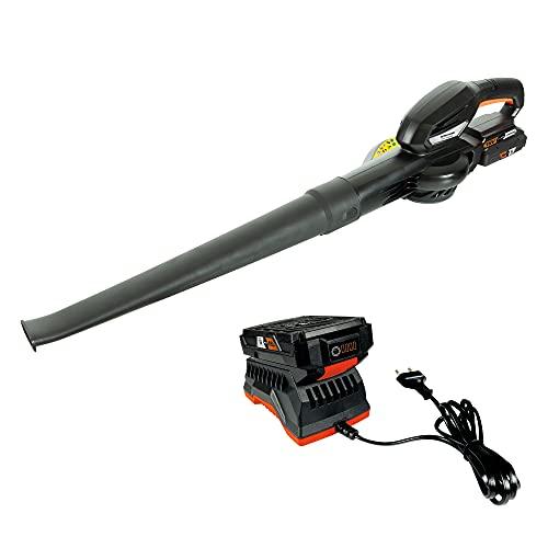 Soplador de hojas con batería de 18 V DELTAFOX DG-CLB 1821 - incl. 1 batería - empuñadura suave, potente motor, barra rascadora, caudal de aire aprox. 208 km/h, incl. cargador rápido