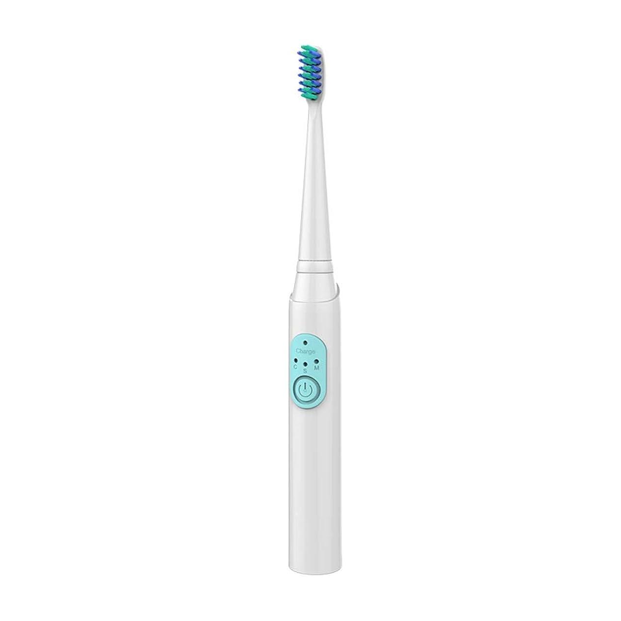 活気づける回復する交流するJia Xing 大人の電動歯ブラシ充電式ソニックホワイトニング歯自動防水電動歯ブラシヘッドソフトブラシ 電動歯ブラシ