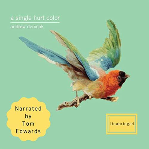 A Single Hurt Color audiobook cover art
