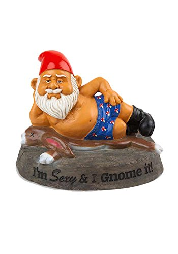 Mr.Giggelz Gartenzwerg - I´m sexy and i GNOME it