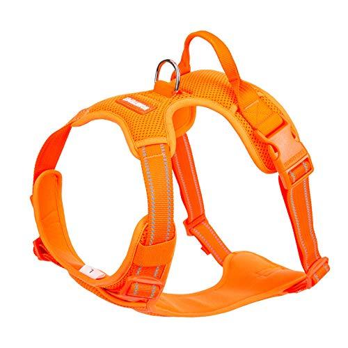 Arnés de Seguridad Reflectante para Perros pequeños Chaleco para Perros sin tensión Chaleco Deportivo para Perros arnés para Perros Productos para Mascotas-Orange_Dog_Harness_XS_33-43cm_Chest