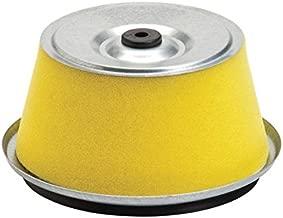Oregon 30-403 Air Filter Replaces Homelite 17211-890-023