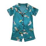Upxiang - Pijama para niño y bebé, 2 piezas, estampado de dibujos animados + pantalones cortos Sleepwear de manga corta, ropa de noche cómoda, ropa de 0 – 4 años, Z16-verde, 120 cm