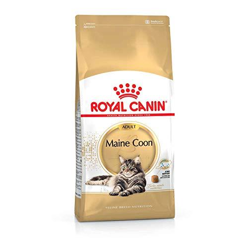 Royal canin maine coon kattenvoer 400 GR