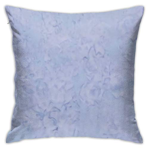 Antvinoler Light Periwinkle Pillows Case Soft Throw Pillow Double-Sided Digital Printing Couch Pillowcase Square 45cm45cm