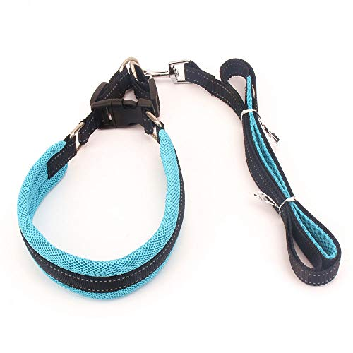 Qyeeypoc huisdier verstelbare kraag hond riem, dikke nylon veiligheid harnas, bijten hond ketting, Blauw