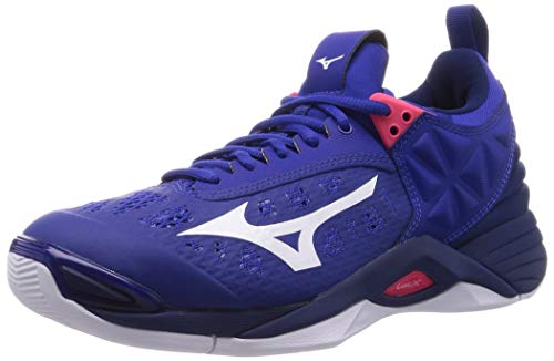 Mizuno Wave Momentum Volleyball Shoes - blue