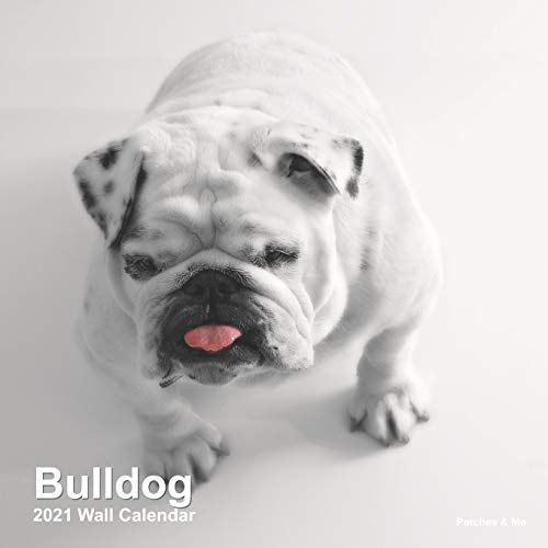 Bulldog 2021 Wall Calendar: (Mini) (Furry Dog Friends)