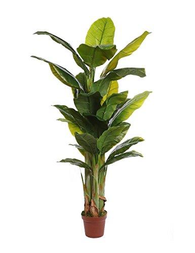 Todaslasplantas.com PLATANERA Artificial EN Maceta 172CM