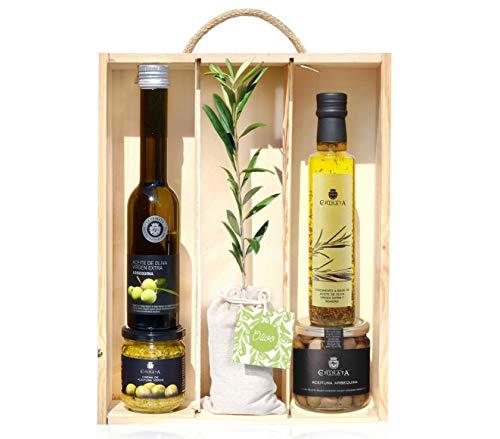 Lote Gourmet Regalo Sabores con árbol olivo natural pequeño, aceite de oliva virgen extra, crema para untar, aceite condimentado y aceitunas