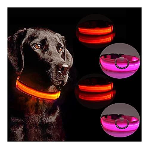4 piezas DIRIGIÓ Collar de perro, collar de mascota luminosa con modo estable / intermitente, collar de perro luminoso impermeable de nylon ajustable, reutilizable, pequeño, mediano y grande. collar