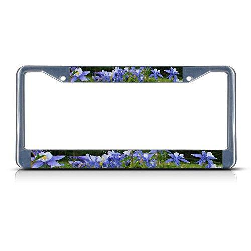 Columbine Flower Metal License Plate Frame Tag Border Perfect for Men Women Car garadge Decor
