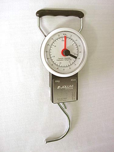 Joluvi Pesa Fly Scale