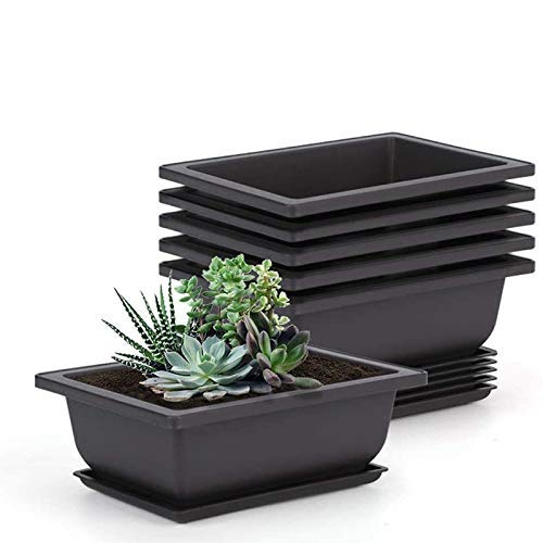 Perfit 10 Stück Pflanztöpfe mit Tablett, Kunststoff Bonsai Pflanztopf für Blumen Sukkulenten Topfpflanze 16,5X12cm