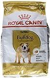 ROYAL CANIN Bulldog Adult 3 kg, 1er Pack (1 x 3 kg)