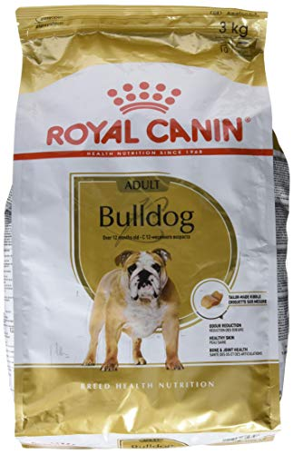 ROYAL CANIN Bulldog Adult 3 kg, 1er Pack (1 x 3 kg)