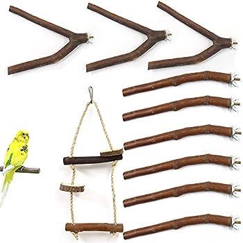 Betinyar Lot de 10 perchoirs en bois naturel pour perroquet, balançoire pour perruches, calopsittes, inséparables (nature)