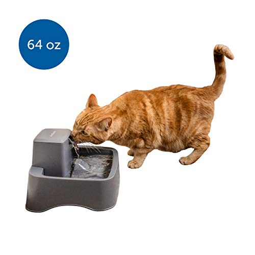 PetSafe Drinkwell ½ gallon Pet Fountain, Best for Small Dog & Cat Households, Easy-to-Clean Design, Filter Included