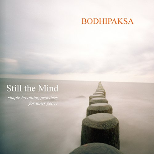 Still the Mind audiobook cover art
