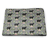 Dog Bed Pad Animal Planet Pet Mattress for Cats Crate Washable Training Puppy Blankets Rug Warm Sleep Medium Mat