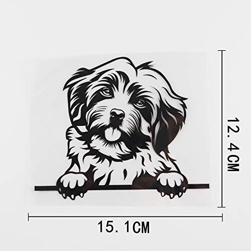 JKGHK Lustiger Havaneser-Hunde-Aufkleber, Vinyl, Autoaufkleber, Schwarz/Silber, 15,1 x 12,4 cm