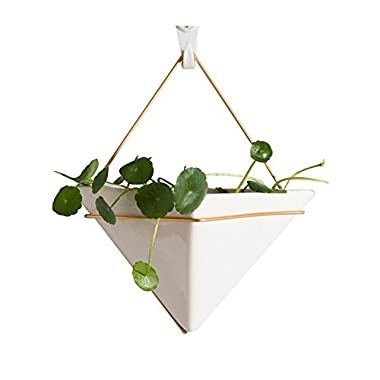 Hanging Planter For Indoor Plants, Geometric Wall Decor Container - Great For Succulent Plants, Air Plant, Faux Plants,White Ceramic/Brass