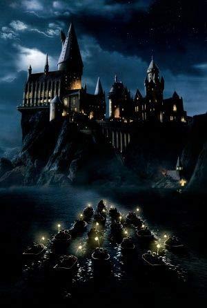 Harry Potter and The Philosophers Stone – Textlos Film Poster Plakat Drucken Bild - 43.2 x 60.7cm Größe Grösse Filmplakat