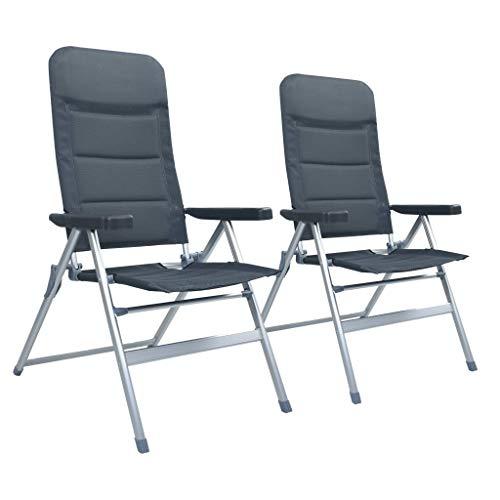 vidaXL 2X Chaises de Jardin Inclinables Chaise de Camping Siège de Pêche Chaise de Plage Voyage Terrasse Patio Extérieur Aluminium Gris