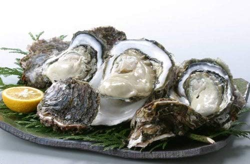 隠岐のいわがき プロトン凍結 3Lサイズ 5枚入り 日本海隠岐活魚倶楽部 ぷりぷり濃厚な岩牡蠣 鮮度抜群 ジューシーで磯の香りたっぷり 牡蠣メス 軍手 レシピ付