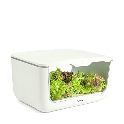 VegeBox Jardín Hidropónico Interior Home - Cultivo Inteligente | 28 Hoyos de plantación | Riego con Apagado automático | Iluminación Inteligente con Temporizador | Ahorre Espacio apilándolos (Blanco)
