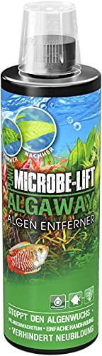 Microbe-Lift Algaway Algenentferner - beseitigt schnell & effektiv Algen in jedem Süßwasseraquarium & verhindert deren Neubildung, 473 ml