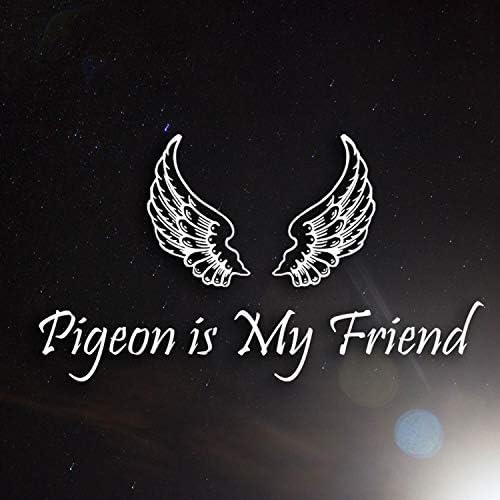 Pigeon Is My Friend