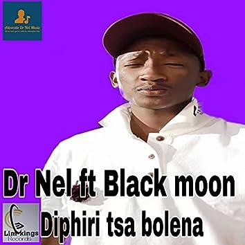 Diphiri tsa bolena (feat. Black moon)
