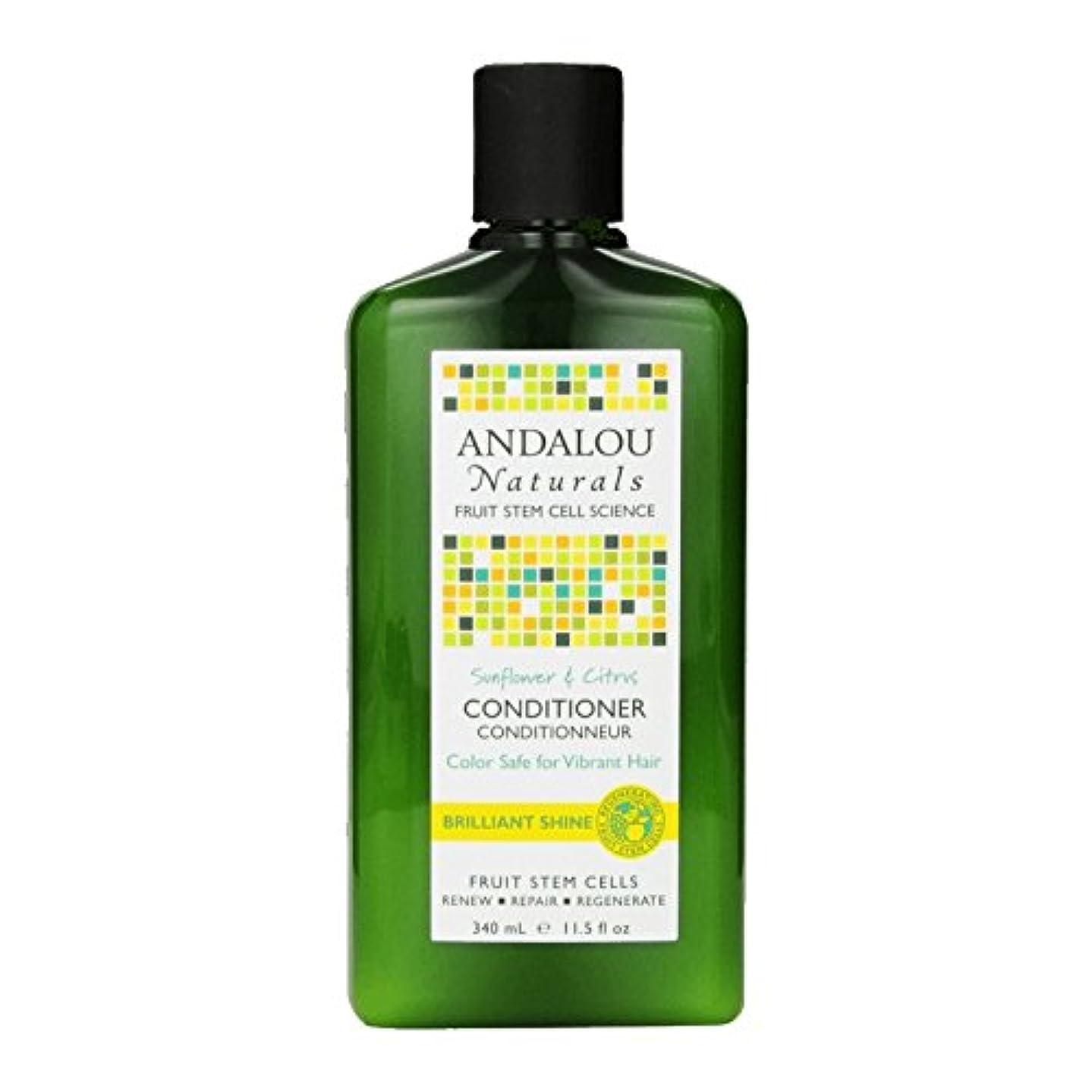 閉じる組拡張Andalou Sunflower & Citrus Brilliant Shine Conditioner 340ml (Pack of 2) - アンダロウひまわり&シトラス鮮やかな輝きコンディショナー340ミリリットル (x2) [並行輸入品]